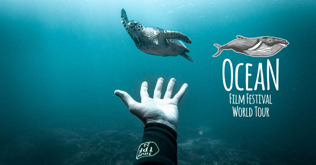 Ocean Film Festival World Tour 2020 presented by Adventure Reels at Byron Theatre